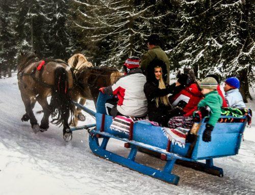 Vacanta de iarna a copiilor Februarie 2019