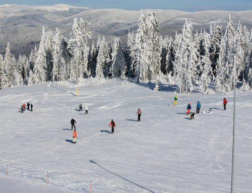 Vacanta de iarna a copiilor Ianuarie 2019